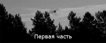 Лес, первая часть